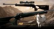 R8 Professional Success .243