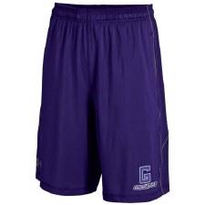 Shorts UA Raid Solid P S