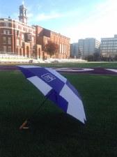 """Umbrella, Golf 62"""" Vented"""