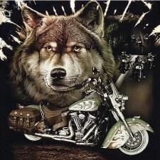 Glow in The Dark W/Rivets Wolf