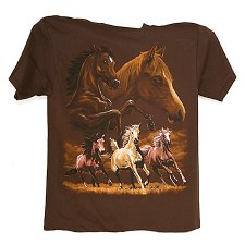Five Horses On Brown