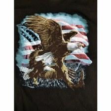 Perched Eagle W/Flag