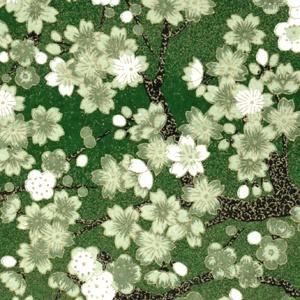Chiyogami Green Charlotte