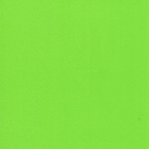 Poster Paper - Pale Green
