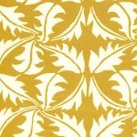 CI Dandelion Turmeric