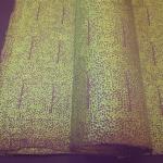 Nepali Paper - TREES Moor