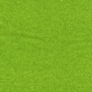 Tissue Paper - Oasis Green