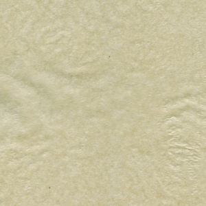 Tissue Paper - Oatmeal
