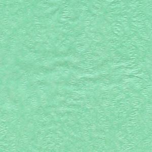 Tissue Paper - Pistachio