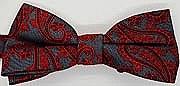 Bow Tie: Pailsey, Pre-Tied