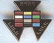 R.A. Past High Priest Pin