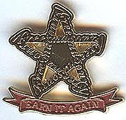Earn It Again Lapel Pin -2008