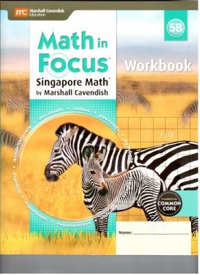 Math in Focus Workbook 5B