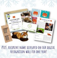 Limited Edition Adira Holiday Adoption Package