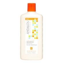 Andalou Argan & Shea Shampoo 11.5 oz