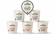 Clover Yogurt Organic Cream on Top Maple 6oz