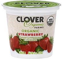 Clover Strawberry Organic Lowfat Yogurt 6oz