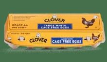 Clover Cage Free Large White Eggs 1 Dozen