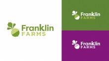 Franklin Farms Original Organic Tempeh 8 oz