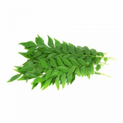 Fresh Curry Leaves  1 PC