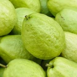 Fresh Guava Mex