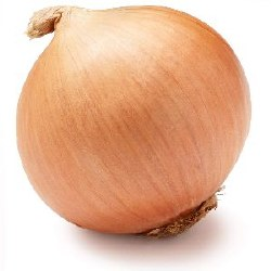 Fresh Yellow Onions (Big)