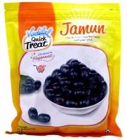 Vadilal Jamun 11oz