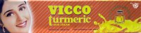 Vicco Turmeric 15gm