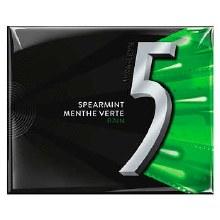 5 Gum Rain Spearmint