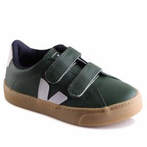 Esplar-21 Green 23