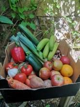 £20 veg box