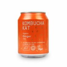 Organic Ginger Kombucha Kat