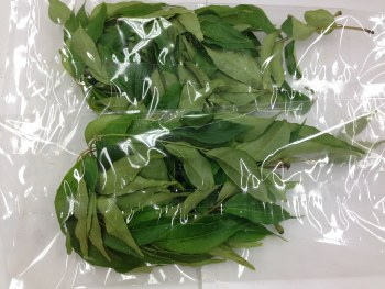 CURRY LEAVES BY COUNT