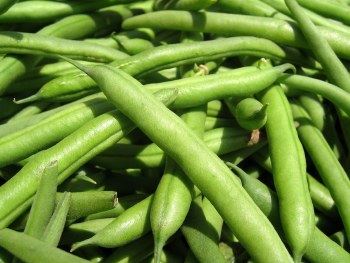 GREEN BEANS BY LB