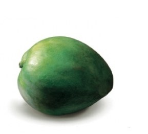 Kent Mango By Count