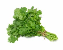 CILANTRO BY COUNT