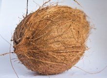 DRY COCONUT BY COUNT