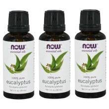 Eucalyptus Oil 3.5 Fl Oz
