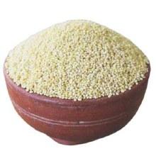 Gowithin Barnyard Millet 2lb
