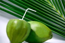 GREEN COCONUT BY COUNT