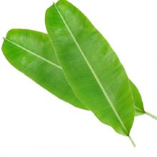 Banana Leaves 3 Ct