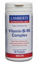 VIT B-100 COMPLEX