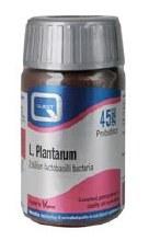 L Plantarum