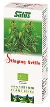 Stinging Nettle Organic Fresh