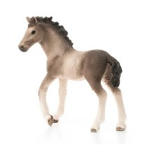 13822 SCH ANDALUSIAN FOAL