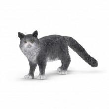 13893 SCH MAINE COON CAT