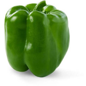 Fresh Bell Pepper Green
