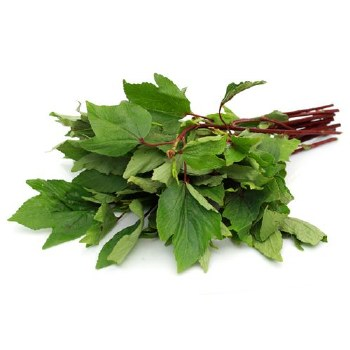 Fresh Gongura Leaves