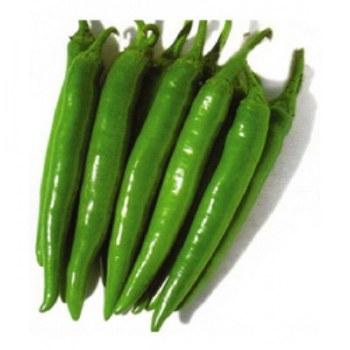 Fresh Long Chilli