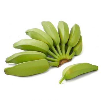 Fresh Burro Banana